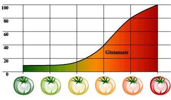 Почему помидорка вкусная