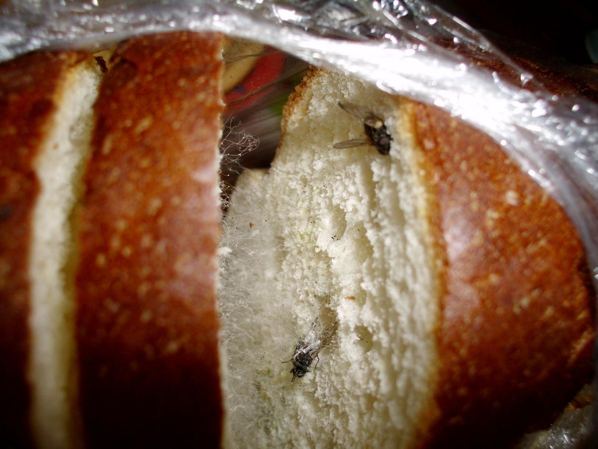 Мухи в хлебе