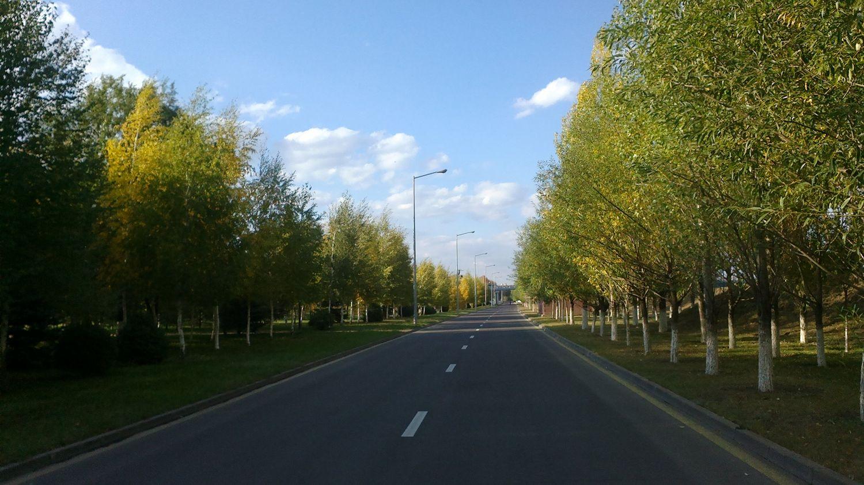 Прогулка длиною в город